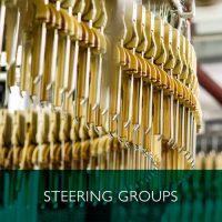 TSA-Members-Area-Box-steering-group